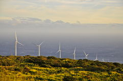 Wind-powered Generators on Maui Coast Royalty Free Stock Image
