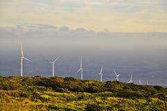 Wind-powered Generators on Maui Coast Royalty Free Stock Image