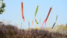 Wind with Prayer flags or Tung Flag of Lanna at northern of Thailand stock video