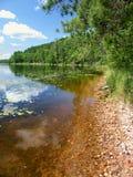 Wind Pudding Lake Northwoods Wisconsin. Emergent aquatic vegetation covers Wind Pudding Lake in northwoods Wisconsin royalty free stock photography