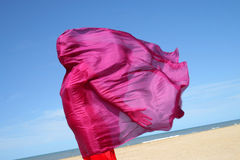 Wind with red scarf Royalty Free Stock Image