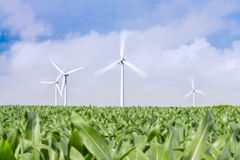 Wind, a renewable energy. Using wind to save the planet stock photography