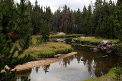 Wind River område, Wyoming Royaltyfria Foton