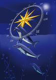 Wind rose and dolphins Royalty Free Stock Photos