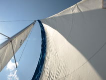 Wind in sails in sailboat. Full sails on a sailboat verticle stock photography