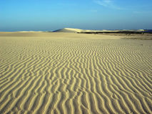 Free Wind Sand Royalty Free Stock Image - 117086