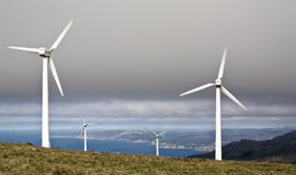 The wind from the sea. A windfarm in Lugo, Galicia, just in the coast Royalty Free Stock Photography
