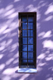 Wind Shadows. Shadows on a wall Royalty Free Stock Photo