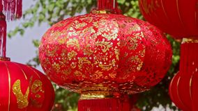 Wind Shakes Slowly Hung up Large Chinese Lanterns at Sunlight. Closeup wind shakes slowly hung up large nice red Chinese lanterns at sunlight before Vietnamese