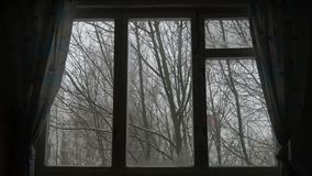 Wind shakes the trees and snow falling in wooded area seen through window.  stock video