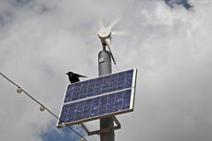 Wind, Solar and Crow power Royalty Free Stock Image