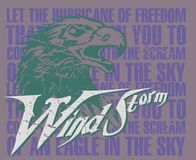 Wind storm. Eagle head on the floor writing chart royalty free illustration