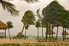 Wind storm over the Caribbean sea, Mexico stock images