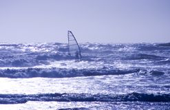 Wind Surfer 1 Royalty Free Stock Photos