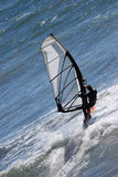 Wind Surfer Royalty Free Stock Photo