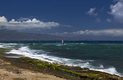 Free Wind Surfer Enjoys The Colourful Hookipa Park Stock Photography - 29368622
