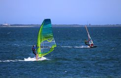 Wind surfers sail boarding across the ocean. With a green sail royalty free stock photos