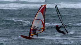 Wind surfers at stormy sea stock photography