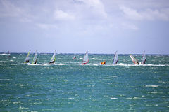 Free Wind Surfing Stock Photo - 33881140