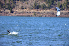Wind surfing on the Columbia River, Hood River OR. Stock Photo