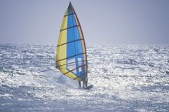 Wind Surfing on Pacific Ocean Royalty Free Stock Image