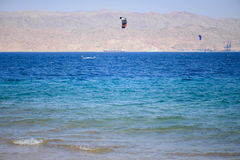 Wind surfing in red sea Royalty Free Stock Photos