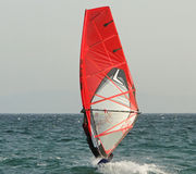 Wind Surfing Royalty Free Stock Image