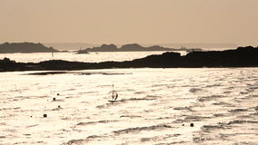 Wind surfing, sunset, Dinard, Brittany stock video