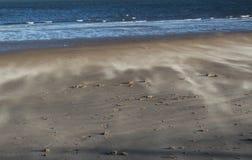Wind Swept Beach, Norfolk, England. Detail of  Wind Swept Beach, Norfolk, England Stock Image