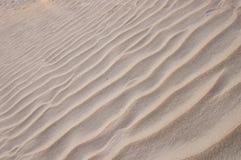 Wind-swept Strand Lizenzfreie Stockfotos