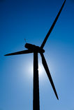 Wind-Tausendstel in der Sonne Lizenzfreie Stockfotos