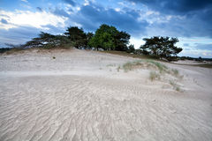 Wind texture on sand dune Stock Photos