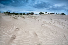 Wind texture on sand dunes Royalty Free Stock Photography