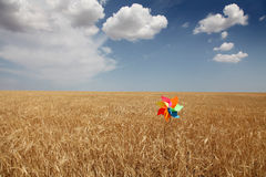 Wind toy at field Royalty Free Stock Photo