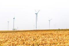 Wind tubines auf Feld Lizenzfreie Stockfotos