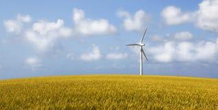 Wind Turbine. On a yellow corn field Royalty Free Stock Photo