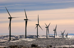 Wind Turbine. Row of Wind Turbines in the snow Royalty Free Stock Photo