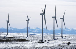 Wind Turbine. Row of Wind Turbines in the snow Royalty Free Stock Photos