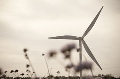 Wind Turbine. And wildflowers, toned color Stock Photo