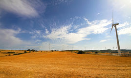 Wind turbine. The yellow field, blue sky. Large wind turbine in the foreground. In the background, a few small wind turbines Royalty Free Stock Photography