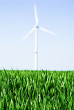 Wind turbine. In green wheat field Stock Image
