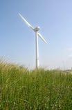Wind Turbine. In the dunes Stock Image