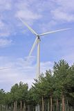 Wind turbine. A wind turbine over trees royalty free stock photos