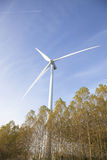 Wind turbine above trees in holland Stock Photos