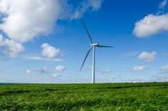 Wind Turbine. Against blue sky in green grass Stock Photos