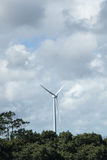 Wind turbine also know as wind mill. Wind turbine on the middle of woods Stock Photos