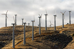 Wind turbine array Royalty Free Stock Photo