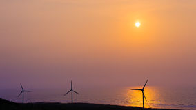 Wind turbine array at seashore wetland Stock Image
