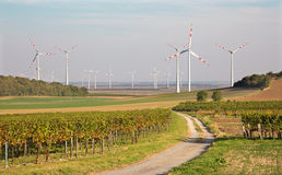 Wind turbine and autumn vineyards in Austria Royalty Free Stock Image