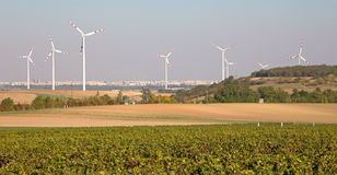 Wind turbine and autumn vineyards in Austria Royalty Free Stock Images